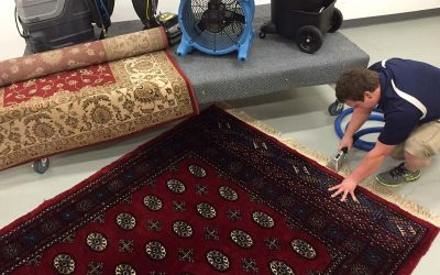 Why You Should Always Have Your Area Rug Cleaned By a Professional