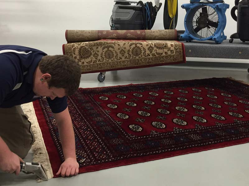 area rug cleaning drop off
